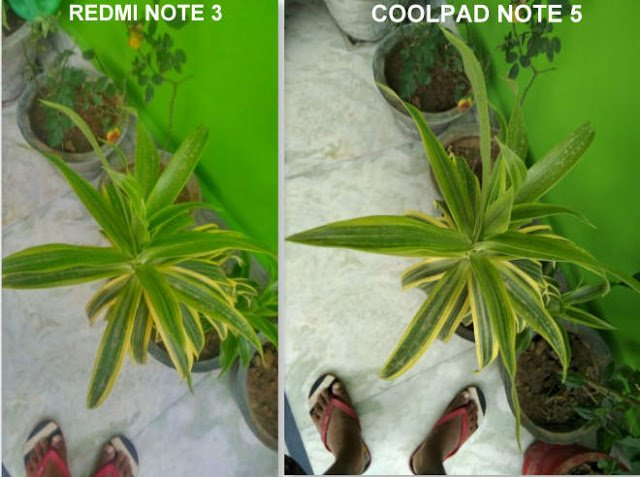 coolpad-note-5-review